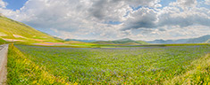 Immagine del virtual tour 'Piana di Castelluccio'